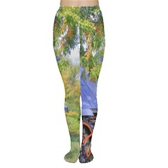 Landscape Blue Shed Scenery Wood Women s Tights