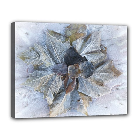 Winter Frost Ice Sheet Leaves Canvas 14  X 11  by BangZart