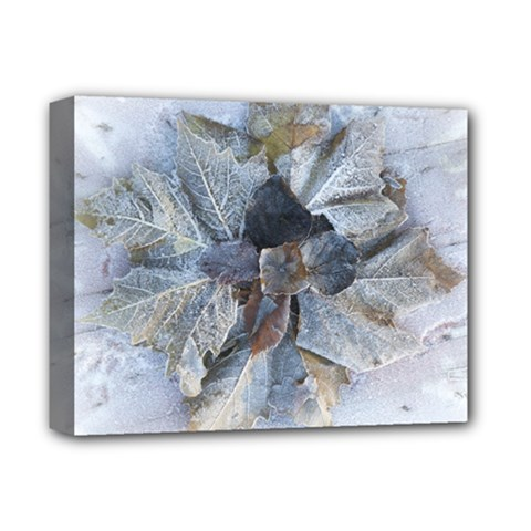 Winter Frost Ice Sheet Leaves Deluxe Canvas 14  X 11  by BangZart