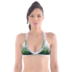 Spring Flowers Grass Meadow Plant Plunge Bikini Top by Celenk