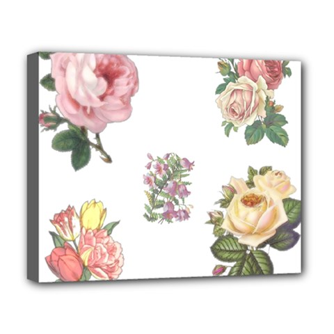 Rose Flowers Campanula Bellflower Deluxe Canvas 20  X 16   by Celenk