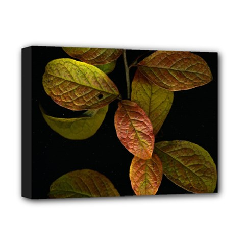 Autumn Leaves Foliage Deluxe Canvas 16  X 12   by Celenk