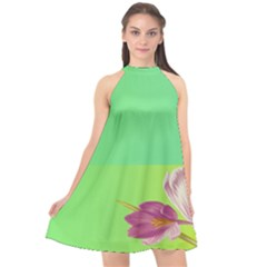 Background Homepage Blossom Bloom Halter Neckline Chiffon Dress