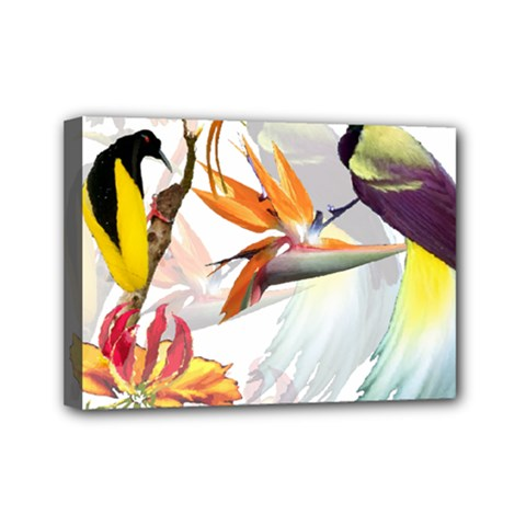 Exotic Birds Of Paradise And Flowers Watercolor Mini Canvas 7  X 5  by TKKdesignsCo