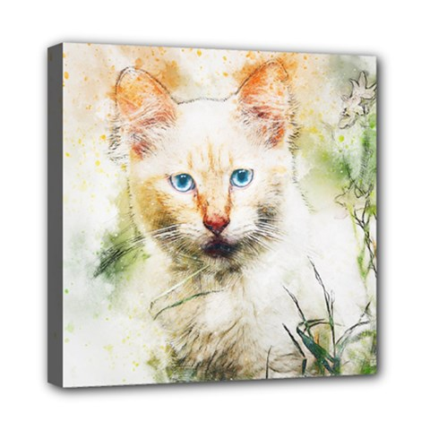 Cat Animal Art Abstract Watercolor Mini Canvas 8  X 8