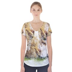 Bear Baby Sitting Art Abstract Short Sleeve Front Detail Top