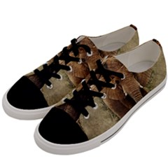 Elephant Animal Art Abstract Men s Low Top Canvas Sneakers by Celenk