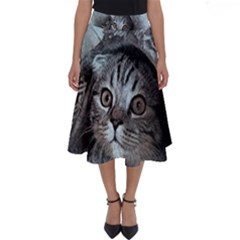 Cat Pet Art Abstract Vintage Perfect Length Midi Skirt
