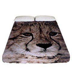 Leopard Art Abstract Vintage Baby Fitted Sheet (california King Size)