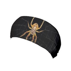 Nsect Macro Spider Colombia Yoga Headband