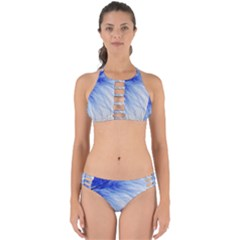 Spring Blue Colored Perfectly Cut Out Bikini Set