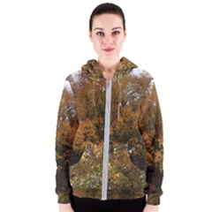 Autumn Tree By Jay Peak Women s Zipper Hoodie