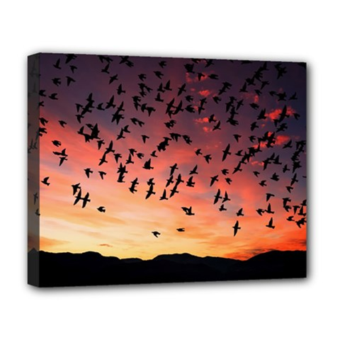 Sunset Dusk Silhouette Sky Birds Deluxe Canvas 20  X 16