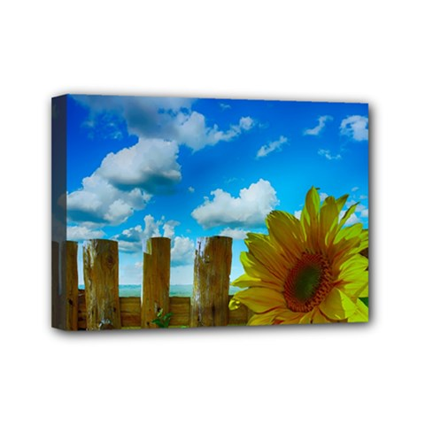 Sunflower Summer Sunny Nature Mini Canvas 7  X 5  by Celenk