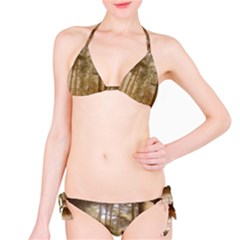 Forest Trees Wood Branc Bikini Set