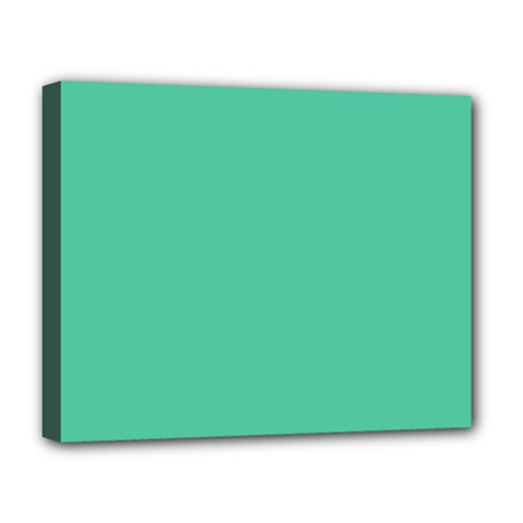 Seafoamy Green Deluxe Canvas 20  X 16