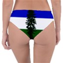 Flag of Cascadia Reversible Classic Bikini Bottoms View2