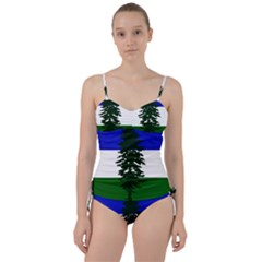 Flag Of Cascadia Sweetheart Tankini Set by abbeyz71