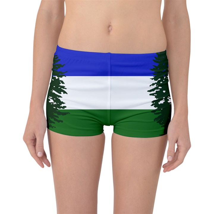 Flag of Cascadia Boyleg Bikini Bottoms