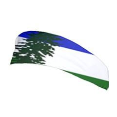 Flag Of Cascadia Stretchable Headband by abbeyz71