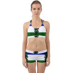 Flag Of Cascadia Back Web Sports Bra Set by abbeyz71
