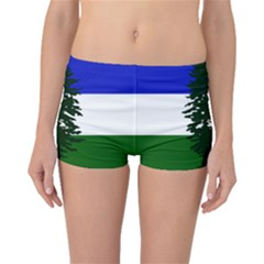 Flag Of Cascadia Boyleg Bikini Bottoms by abbeyz71