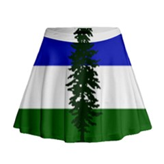 Flag Of Cascadia Mini Flare Skirt by abbeyz71
