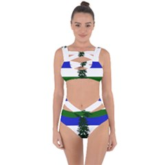 Flag 0f Cascadia Bandaged Up Bikini Set