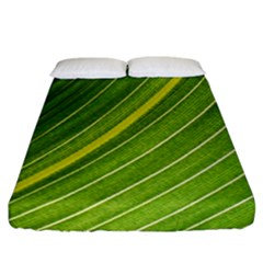 Leaf Plant Nature Pattern Fitted Sheet (king Size)