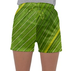 Leaf Plant Nature Pattern Sleepwear Shorts
