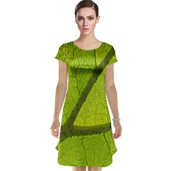 Green Leaf Plant Nature Structure Cap Sleeve Nightdress