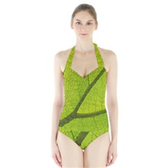 Green Leaf Plant Nature Structure Halter Swimsuit