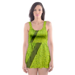 Green Leaf Plant Nature Structure Skater Dress Swimsuit
