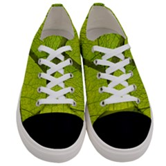 Green Leaf Plant Nature Structure Women s Low Top Canvas Sneakers