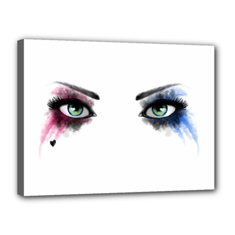 Look Of Madness Canvas 16  X 12  by jumpercat