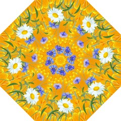 Flowers Daisy Floral Yellow Blue Hook Handle Umbrellas (large)