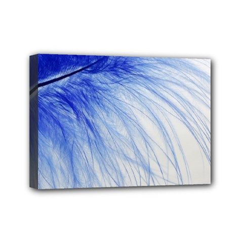 Feather Blue Colored Mini Canvas 7  X 5