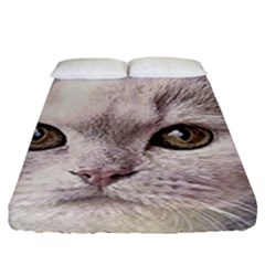 Cat Pet Cute Art Abstract Vintage Fitted Sheet (king Size)