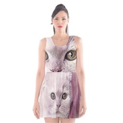 Cat Pet Cute Art Abstract Vintage Scoop Neck Skater Dress