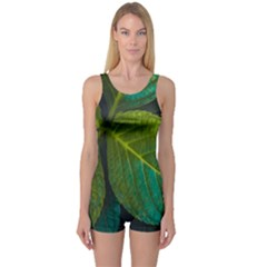 Green Plant Leaf Foliage Nature One Piece Boyleg Swimsuit by Nexatart