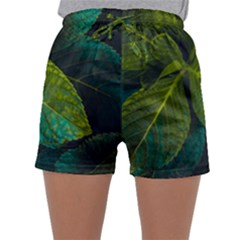 Green Plant Leaf Foliage Nature Sleepwear Shorts