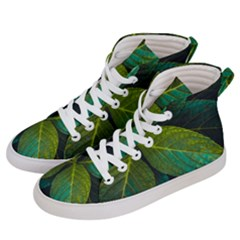 Green Plant Leaf Foliage Nature Women s Hi Top Skate Sneakers by Nexatart