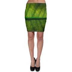 Leaf Nature Green The Leaves Bodycon Skirt