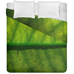 Leaf Nature Green The Leaves Duvet Cover Double Side (california King Size) by Nexatart