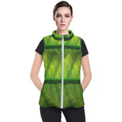 Leaf Nature Green The Leaves Women s Puffer Vest