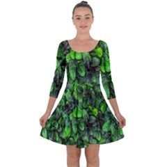 The Leaves Plants Hwalyeob Nature Quarter Sleeve Skater Dress