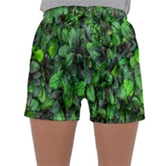 The Leaves Plants Hwalyeob Nature Sleepwear Shorts