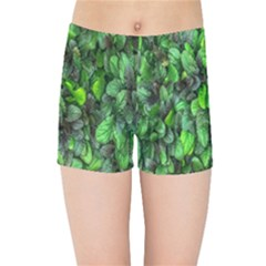 The Leaves Plants Hwalyeob Nature Kids Sports Shorts