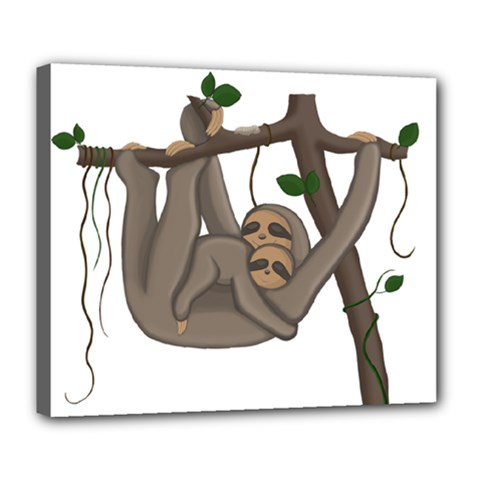 Cute Sloth Deluxe Canvas 24  X 20