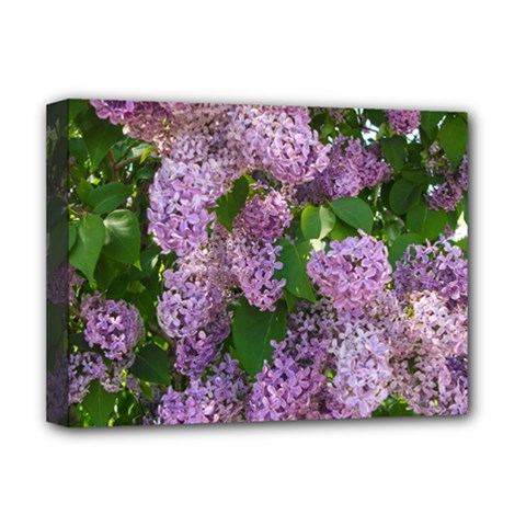 Lilacs 2 Deluxe Canvas 16  X 12   by dawnsiegler